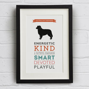 Australian Shepherd Dog Breed Traits Print - posters & prints