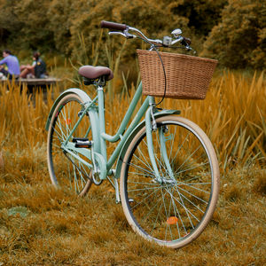 Single Speed Lady's Bicycle - sport-lover