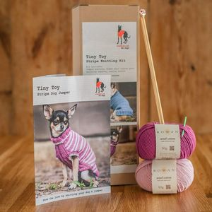 Dog Jumper Knitting Kit Tiny Toy - dogs