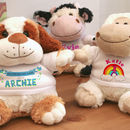 Personalised Soft Toy New Baby Gift