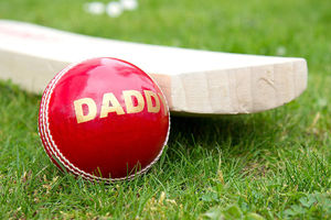 Daddy's Cricket Ball