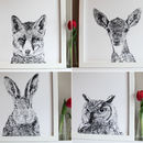 A Set Of Four Woodland Animal Portrait Prints