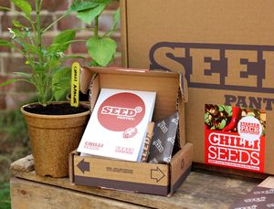 Chilli Seeds Starter Pack - gifts for the garden