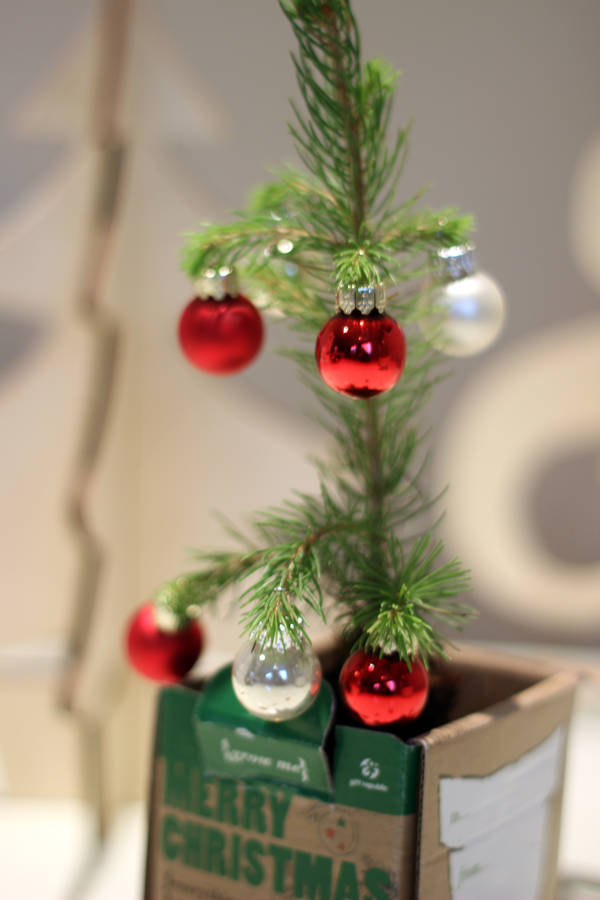 grow your own christmas tree by beecycle ...