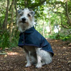 Waterproof Dog Rain Mac - clothes & accessories