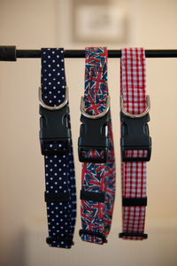 Make Your Own Dog Collar Kit - dogs