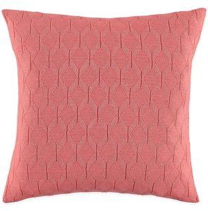 Albert Salmon Cushion
