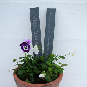 Personalised Engraved Slate Plant Marker - tools & equipment