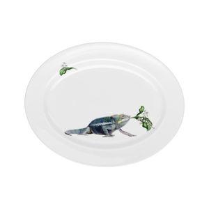 Chameleon Oval Platter