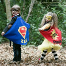 Personalised Superman and Lightning capes