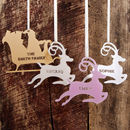 Personalised Reindeer Or Sleigh Christmas Decoration
