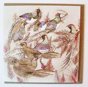 Lady Amherst's Pheasants Card