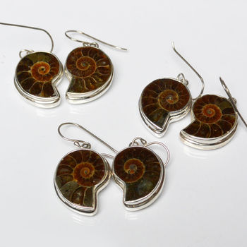 Ammonite Darker Earrings set in Sterling Silver