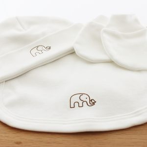 Organic Bib, Beanie And Mitten Set