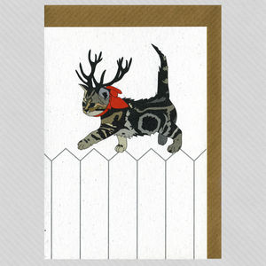 Illustrated Deer Kitty Kitty Blank Card - all purpose cards