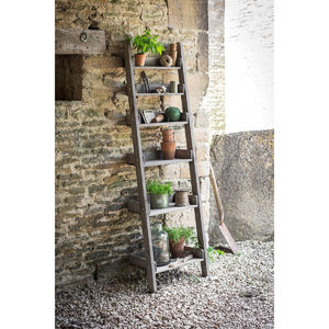 Aldsworth Shelf Ladder - office & study