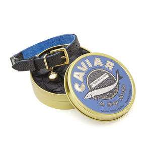 The 'Beluga' Cat Collar With Safety Catch