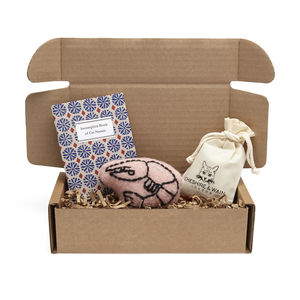New Cat Gift Selection Box - gifts for your pet