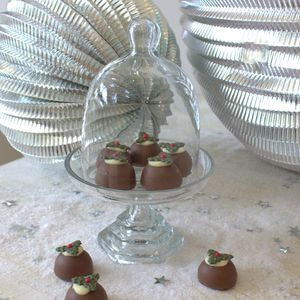 Small Glass Cloche With Stand