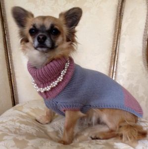 Alpaca And Silk Pastels Dog Jumper