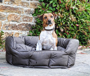 Quilted Waterproof Dog Bed - dogs