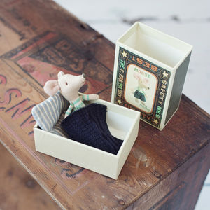 Little Brother Boy Mouse In Match Box