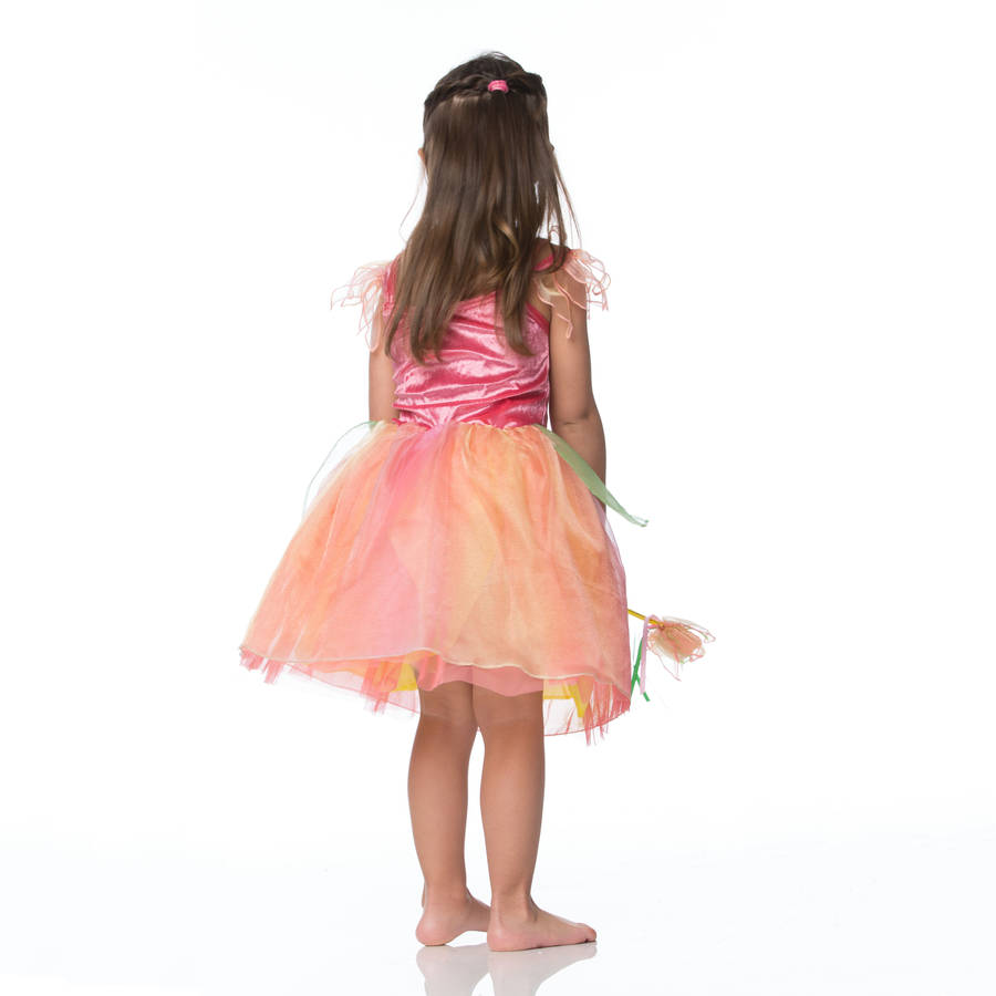 Dress Up: Children's Peach Melba Fairy Dress Up Costume By Time To