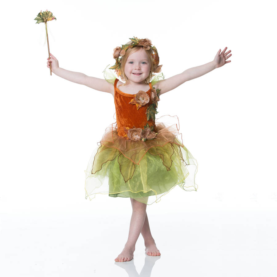 Dress Up: Children's Autumn Fairy Dress Up Costume By Time To Dress