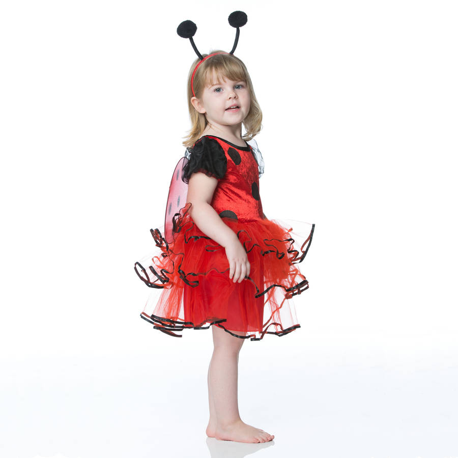 Dress Up: Children's Ladybird Dress Up Costume By Time To Dress Up