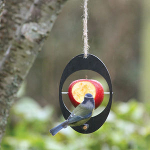 Eco Bird Feeder - small animals & wildlife