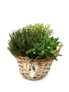 Plant Gifts Vintage Herb Basket Arrangement - home accessories