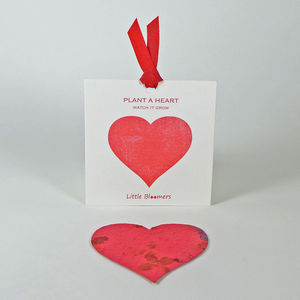 'Plant a Heart' Seed Paper Gift - father's day cards