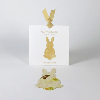 'Plant A Bunny' Seed Paper Gift