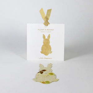 'Plant A Bunny' Seed Paper Gift - alternative easter gifts