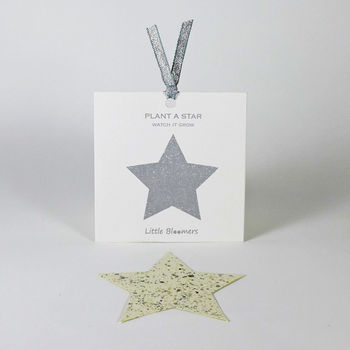 'Plant a Star' Plantable Seed Paper Gift