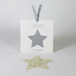 'Plant a Star' Plantable Seed Paper Gift - wedding favours