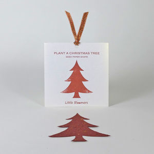 Plant a Christmas Tree Seed Paper Gift - cards