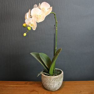 Artificial Potted Orchid - flowers & plants