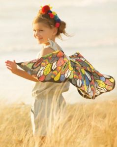 Colour In Butterfly Wings