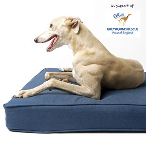 The Forever Hounds Trust Big Memory Foam Dog Bed - floor cushions
