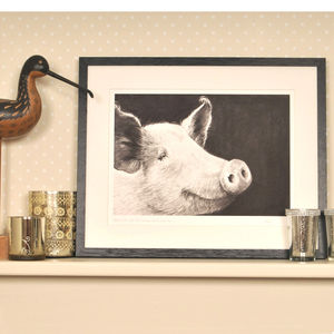 White Pig Framed Print