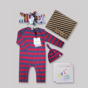 Baby Boys Stripe Playsuit, Hat And Alf Bear Toy