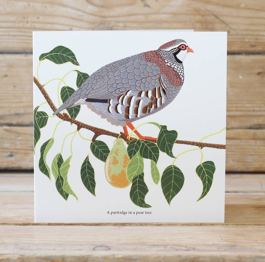 Bird Twelve Days Of Christmas 'Three Designs Six Card Pack'