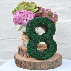 Moss Decorative Numbers - hanging decorations