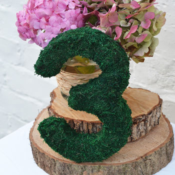 Wedding Real Moss Decorative Table Number
