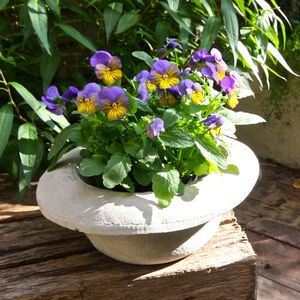 Concrete Bowler Hat Planter - birds & wildlife