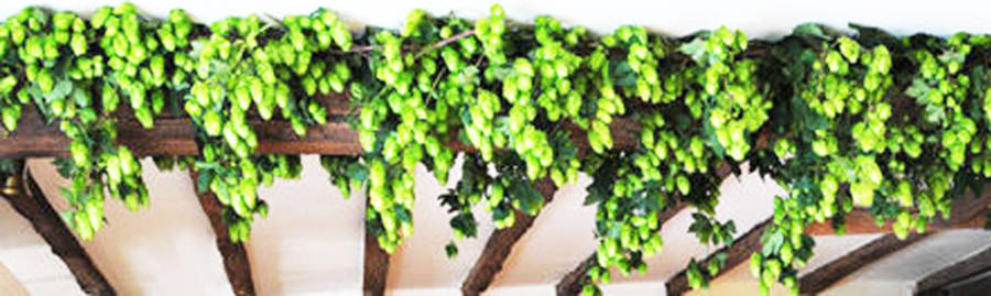 Dried hop vine garland by ville de fleurs for Artificial hops decoration