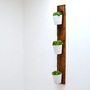 Reclaimed French Oak Vertical Planter - pots & planters