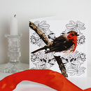 Ten Robin Christmas Cards
