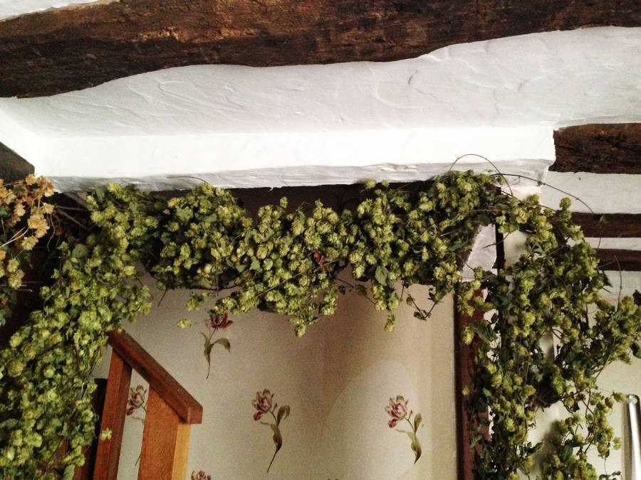 dried hop vine garland